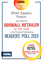 Oddball Fish Retailer of the Year 2019