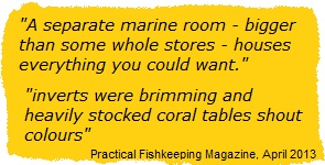 Quote about Wharf Marine from PFK magazine